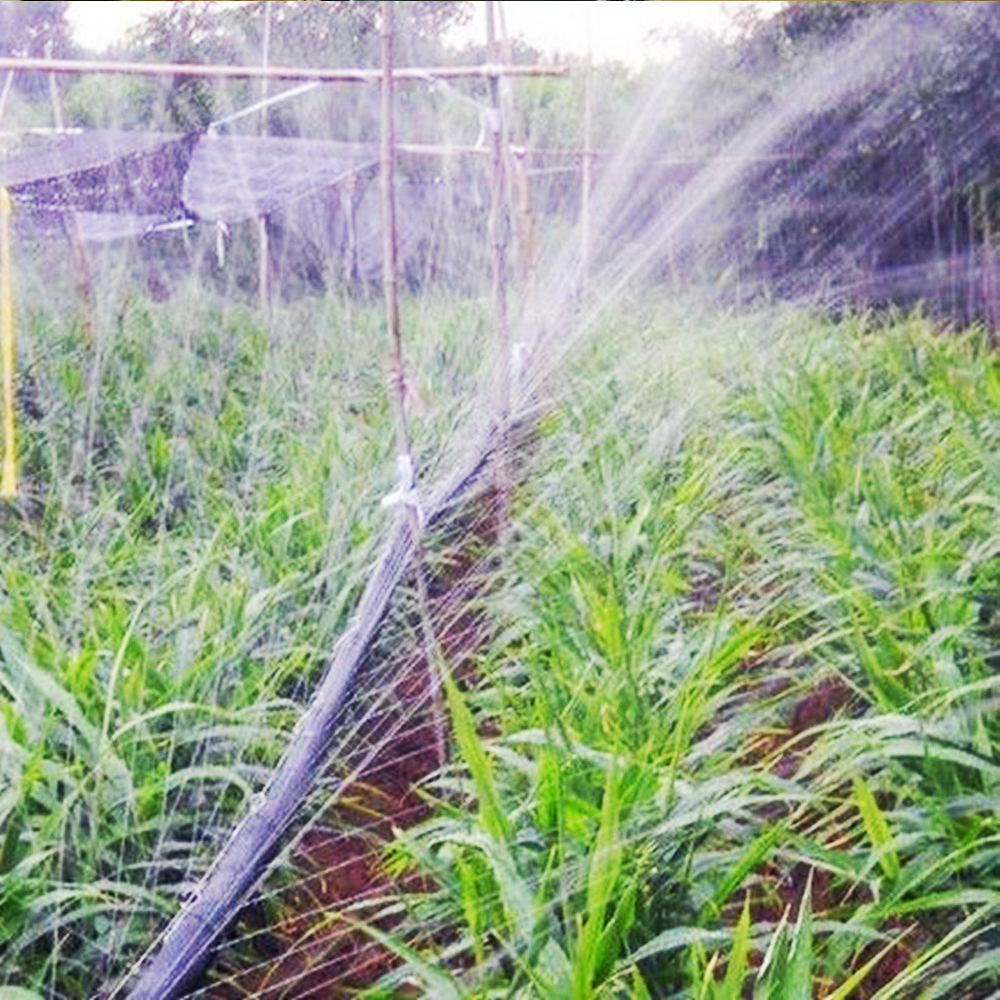 Micro rain spray hose only in Plentirain irrigation system solution